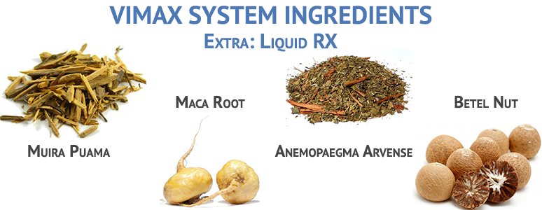 vimax system ingredients